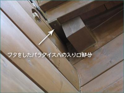 20130419-20130419_008.jpg