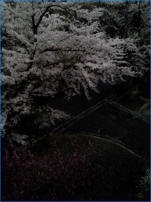 20140406-2014-04-06-14.45.47.jpg