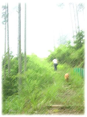 20091208-217-1.jpg